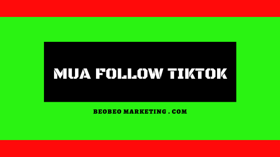 mua follow tik tok